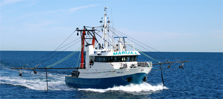 Quin marine pty ltd 57 st vincent street port adelaide for Commercial fishing nets for sale